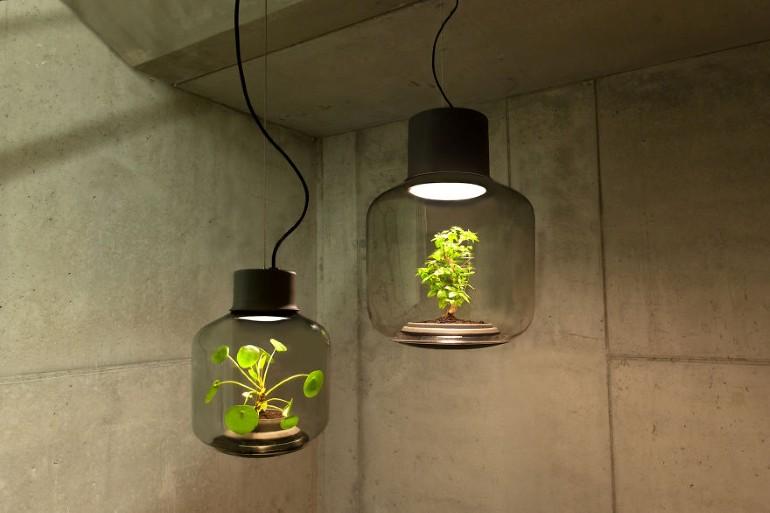 Lampa Proiectata Sa Creasca Plante In Spatii Fara Ferestre (1)