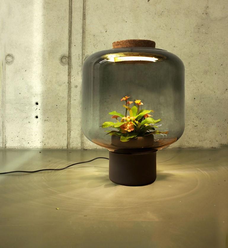 Lampa Proiectata Sa Creasca Plante In Spatii Fara Ferestre (4)