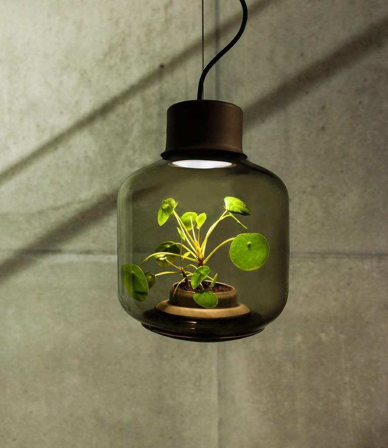 Lampa Proiectata Sa Creasca Plante In Spatii Fara Ferestre (6)
