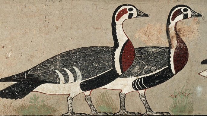 11 Lucruri Interesante Despre Egiptul Antic (8)