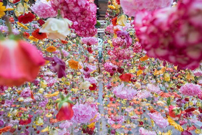 Gradina Suspendata Formata Din 30.000 De Flori Viu Colorate (10)