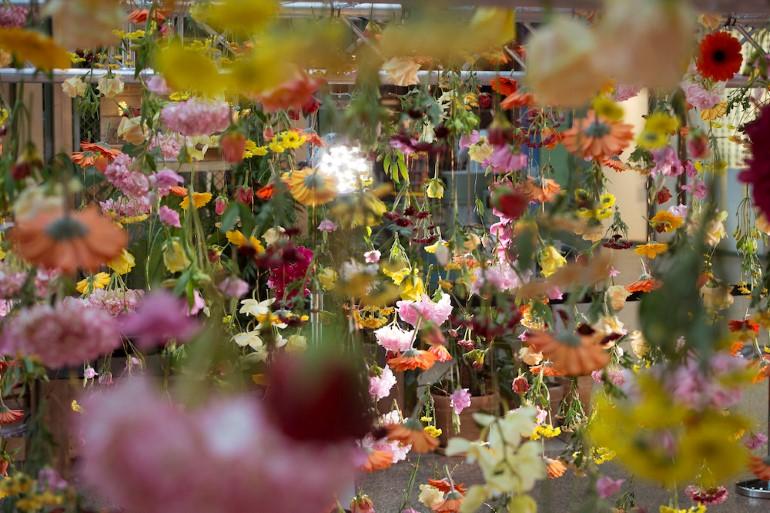 Gradina Suspendata Formata Din 30.000 De Flori Viu Colorate (6)