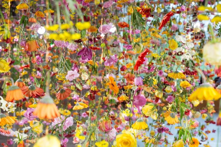 Gradina Suspendata Formata Din 30.000 De Flori Viu Colorate (9)