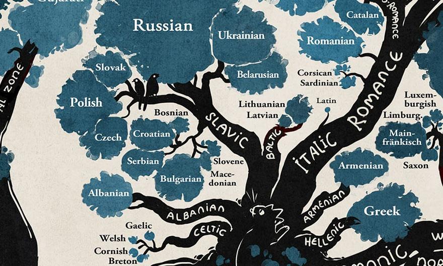 Limbile Indo-Europene Si Uralice. Un Uimitor Infografic Arbore 1